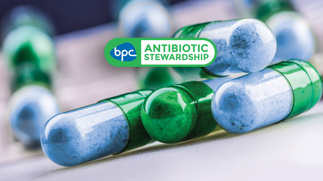 BPC welcomes record drop in sales of antibiotics for use in livestock