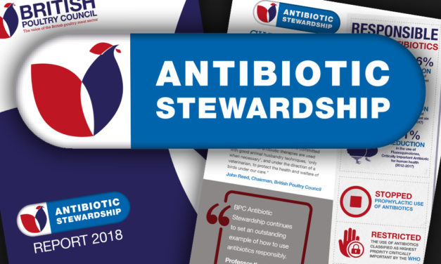 British poultry meat sector's drive for excellence in bird health delivers again on antibiotic stewardship