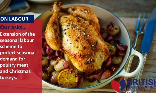 Christmas is the first step: short term relief for British poultry production